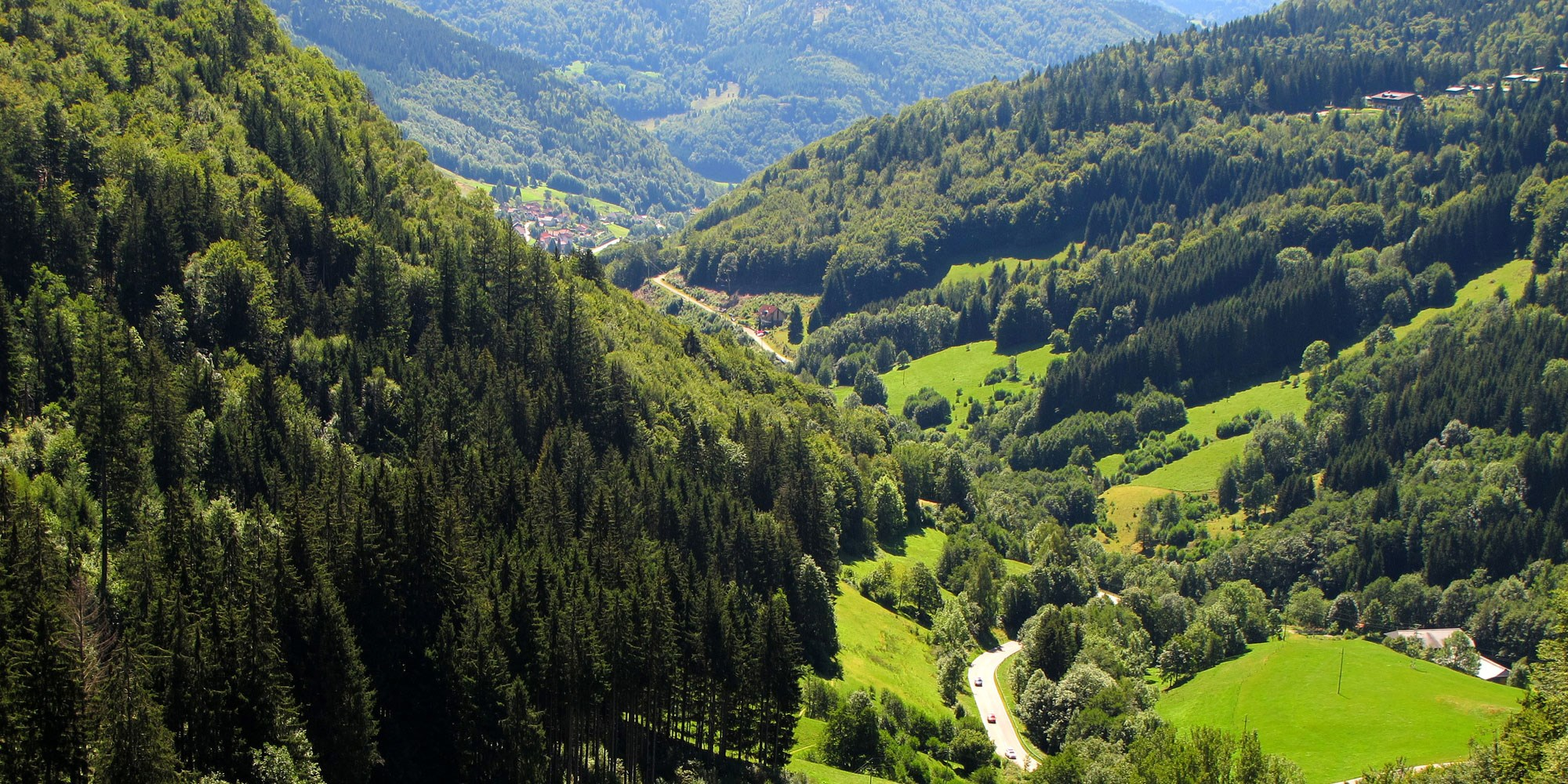 The Black Forest Germany >> Germany S Enchanting Black Forest Not A Cake Tipntrips